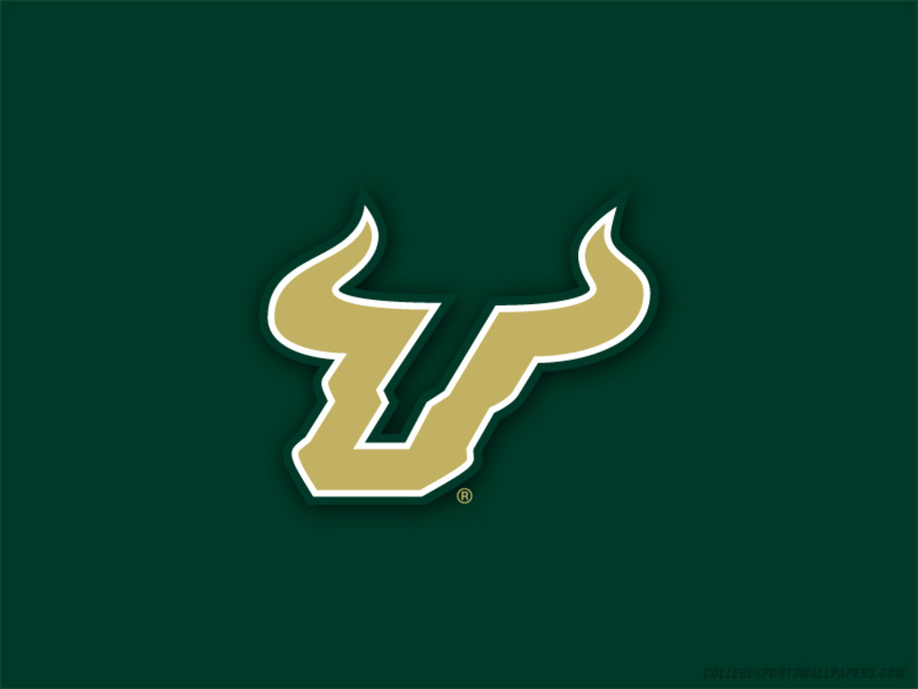 what is the score of the usf bulls game