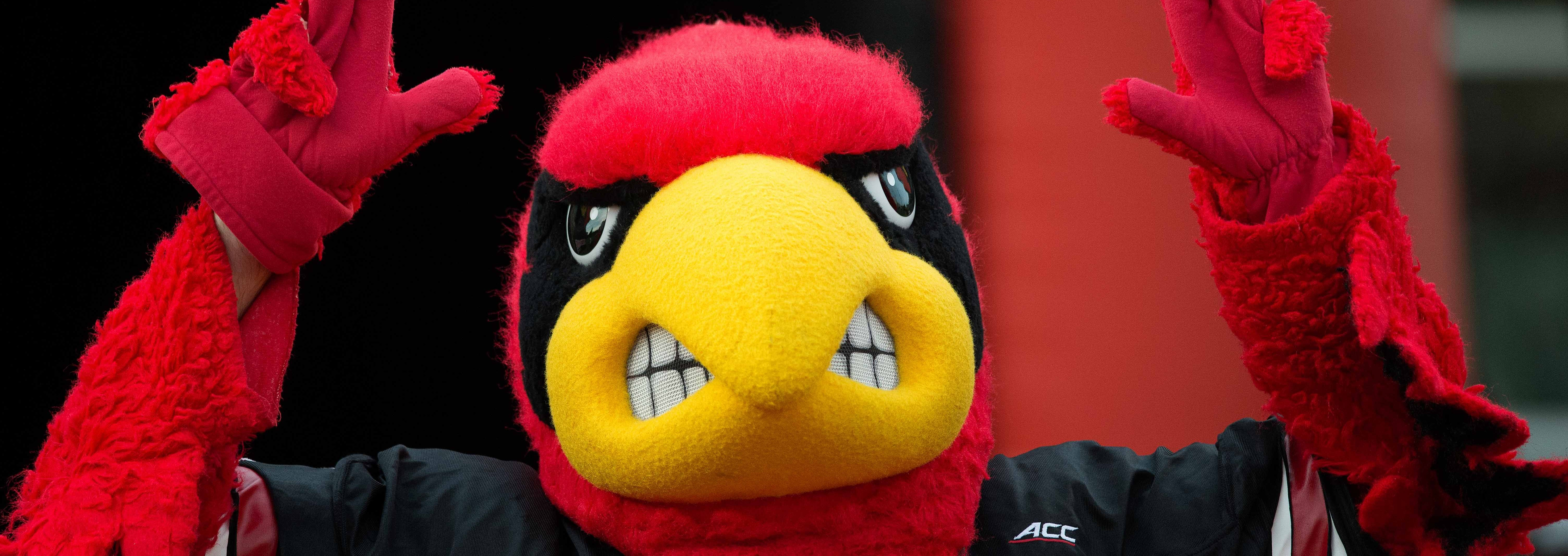 Louie the Cardinal, Cardinal Bird 2015 Louisville Spring Game 4-17-2015 Photo by Adam Creech Fitted