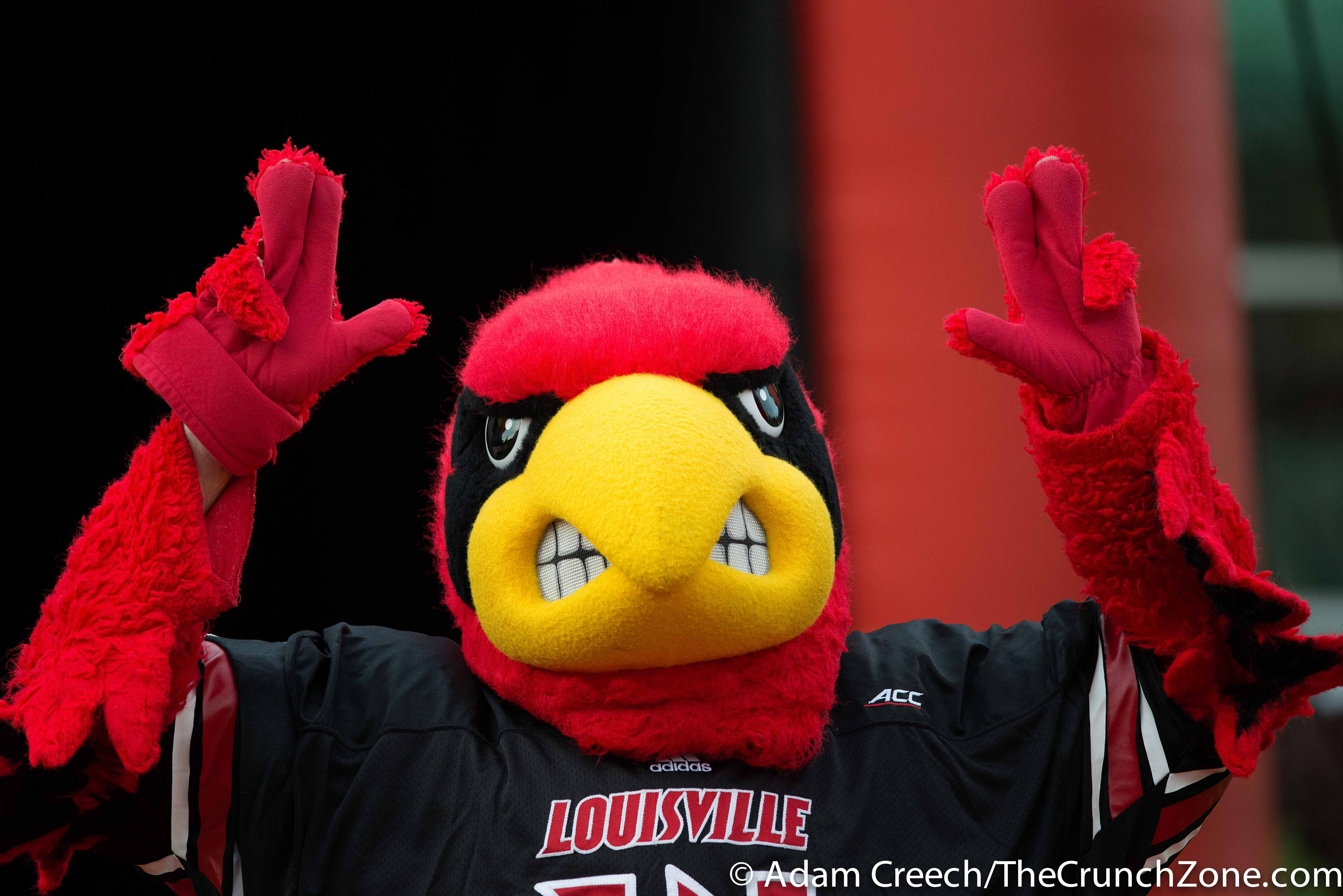 Louie the Cardinal, Cardinal Bird 2015 Louisville Spring Game 4-17-2015 Photo by Adam Creech